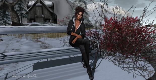 winter-trace_002